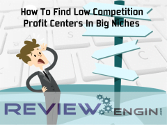 How To Find Low Competition Profit Centers In Big Niches